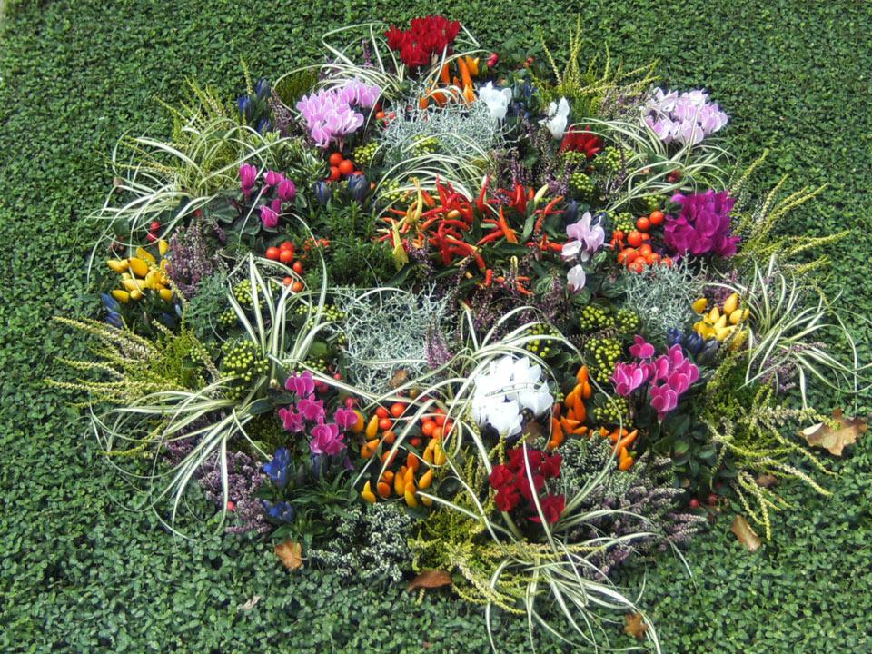 grabbepflanzung-grabpflege-(001)