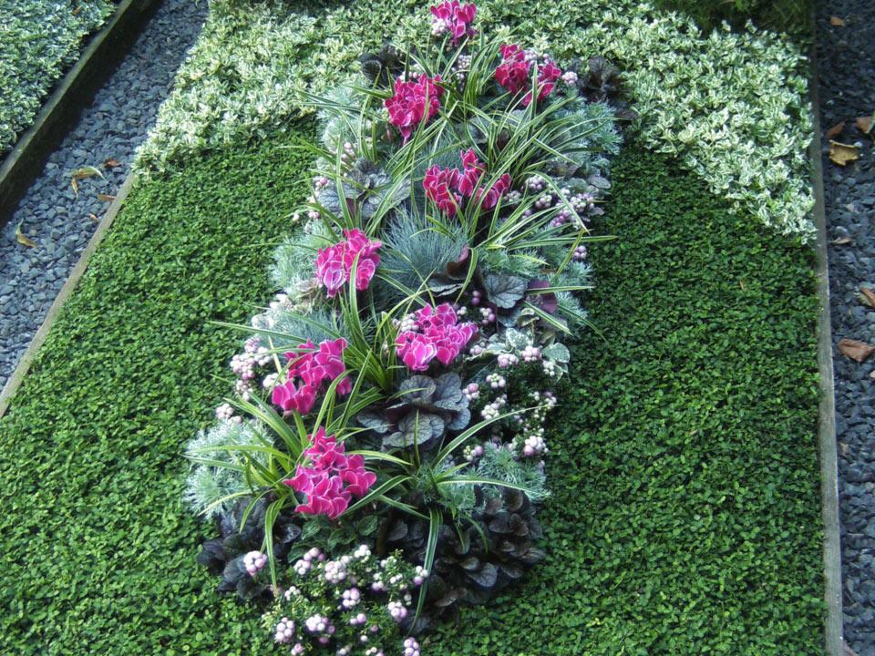 grabbepflanzung-grabpflege-(10)