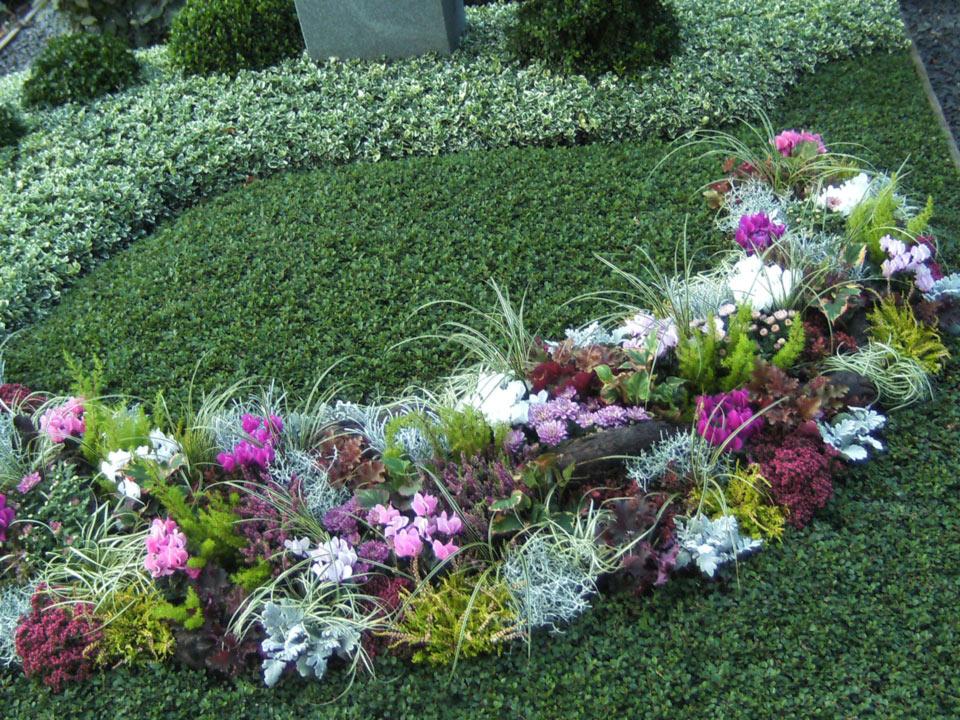 grabbepflanzung-grabpflege-(13)