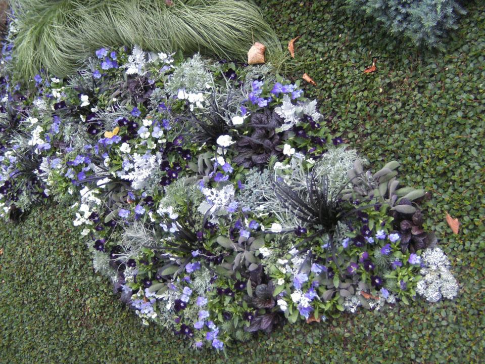 grabbepflanzung-grabpflege-(7)