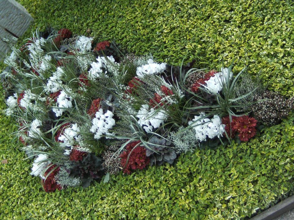 grabbepflanzung-grabpflege-(8)