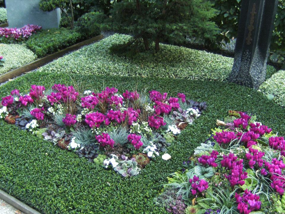 grabbepflanzung-grabpflege-(9)